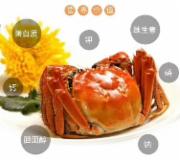 兴化精品大闸蟹纯母10只(2两)