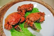 兴化精品大闸蟹纯母10只(3两)